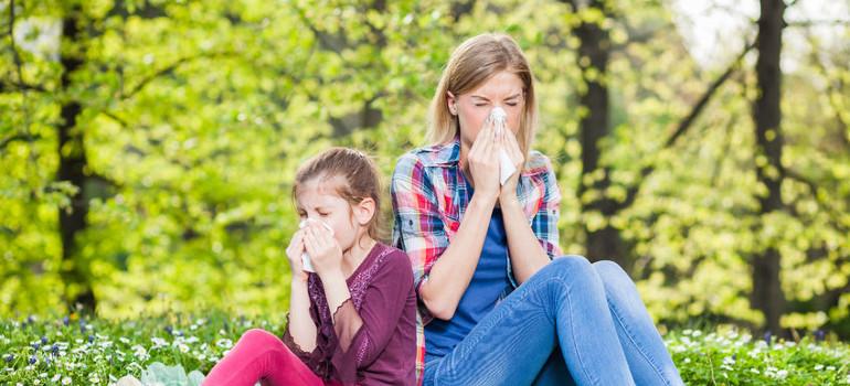 Cómo evitar que las alergias te amarguen la primavera
