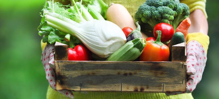 Fruta y verdura ecológica vs convencional. ¿Son realmente tan diferentes?